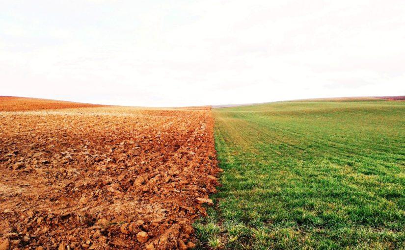 Publication de l'A.R. sur la gestion et l'assainissement des sols